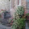 Sale  Apartment in  Fiesole